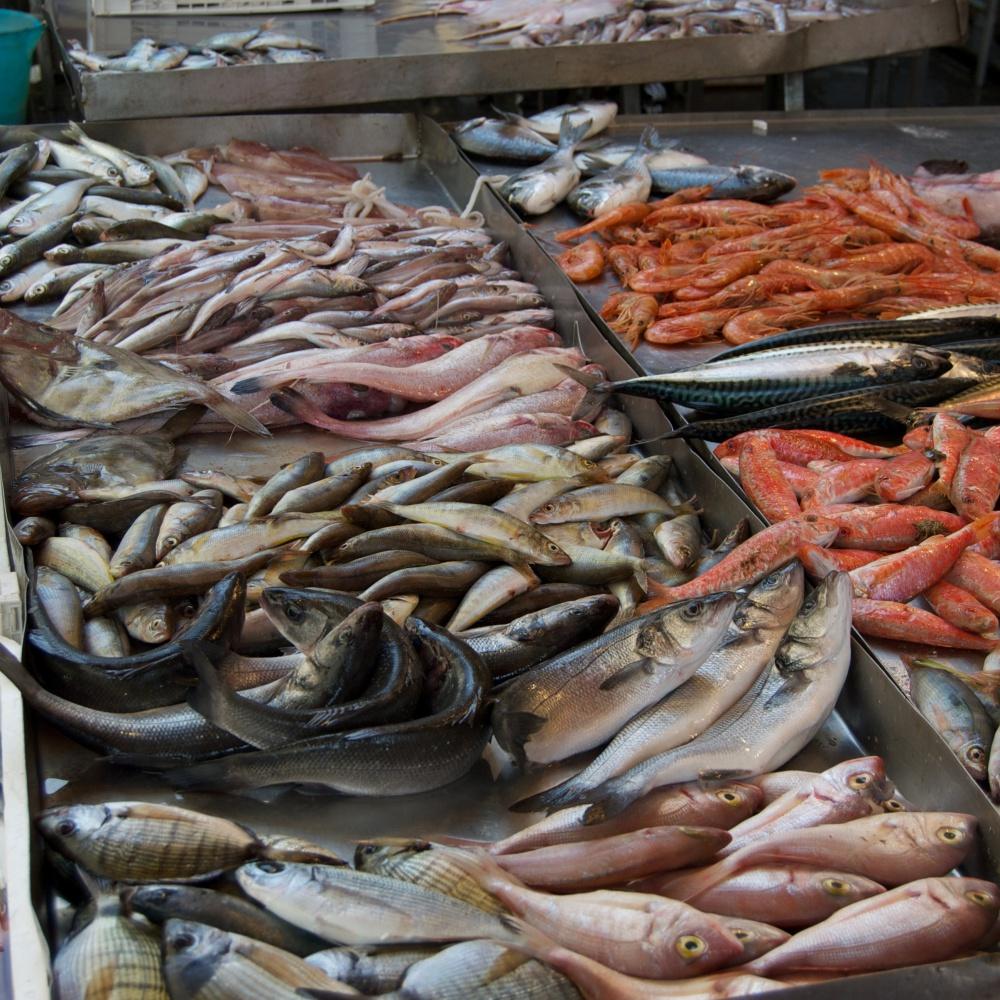 Il pesce di allevamento vale 288 milioni, la trota è superstar