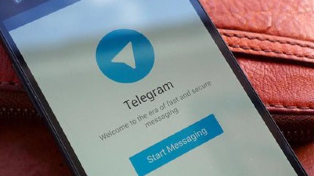 Pdf pirata su Telegram, indagine della procura di Bari, oscurati 329 canali e decine di chat di Whatsapp