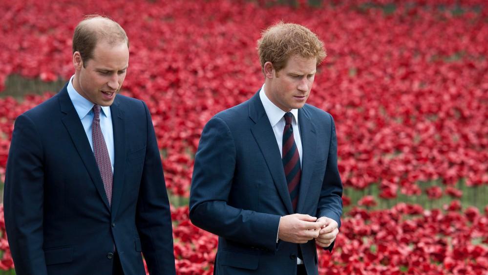 "Arriva un nuovo libro sulla frattura Harry-William, in ""Battle of the Brothers"" si incolpa Meghan"