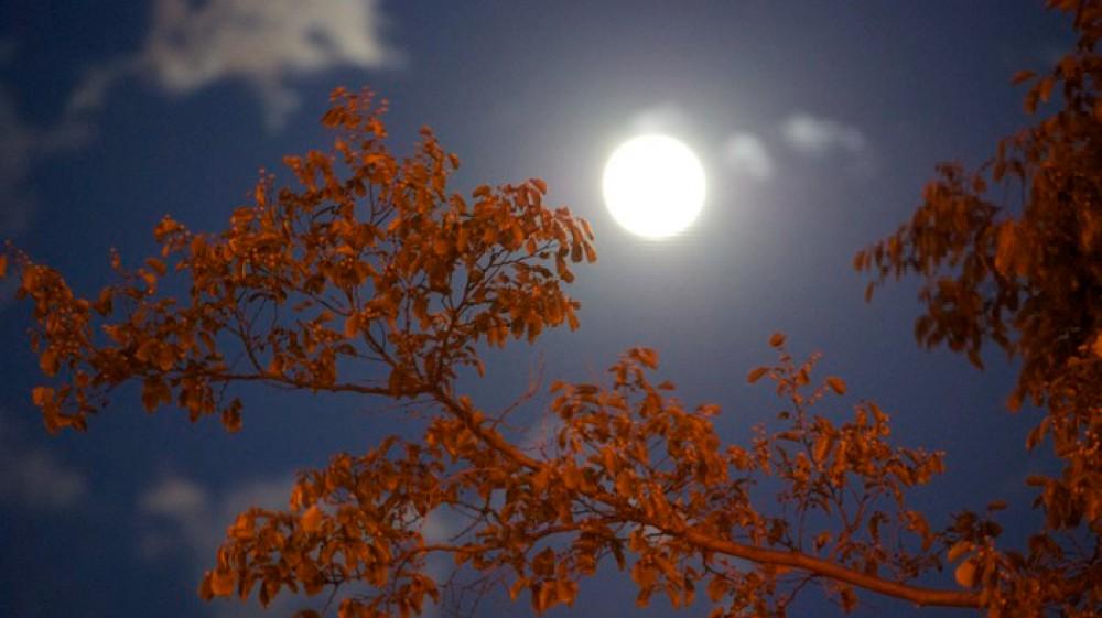 Arrivederci Estate, benvenuto Autunno. L'Equinozio si porta via la bella stagione, appuntamento alle 21.21