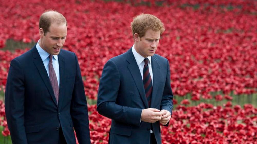 Corona di spine? Harry non torna in Inghilterra per la cerimonia a Kensington Palace