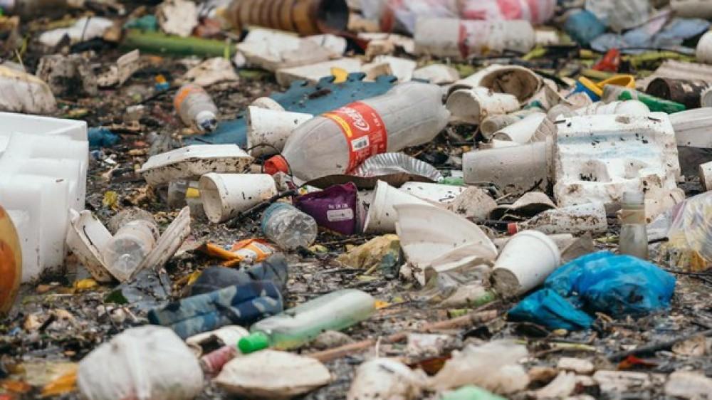 Da oggi l'Unione Europea mette al bando piatti e cannucce di plastica. Non si potranno più produrre e usare