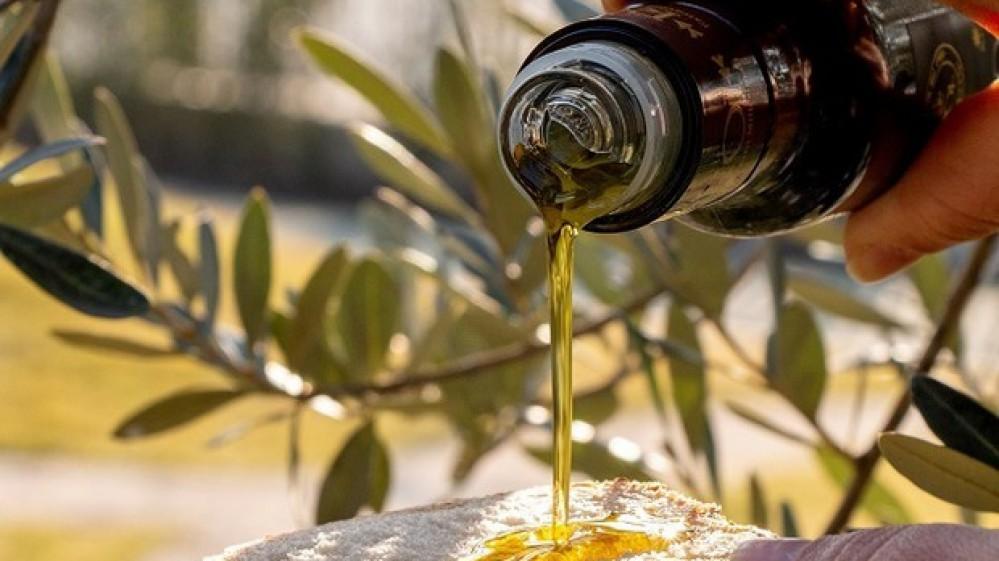 """Extravergine mon amour, si rafforza il """"Made in Italy"""", arriva l'olio degli antichi romani"""