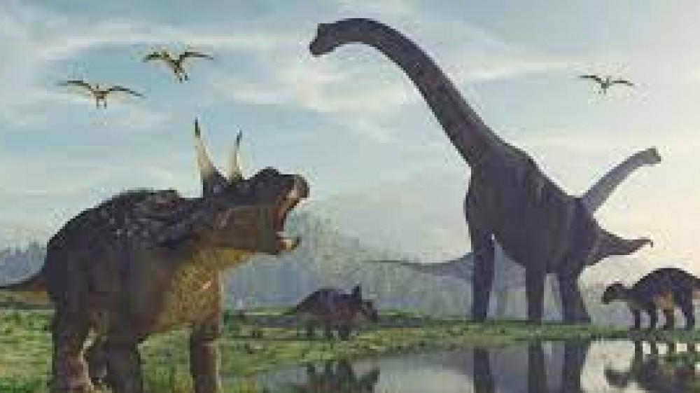 In Cina  scoperta una 'pista da ballo per dinosauri', rinvenute tracce di almeno otto specie diverse