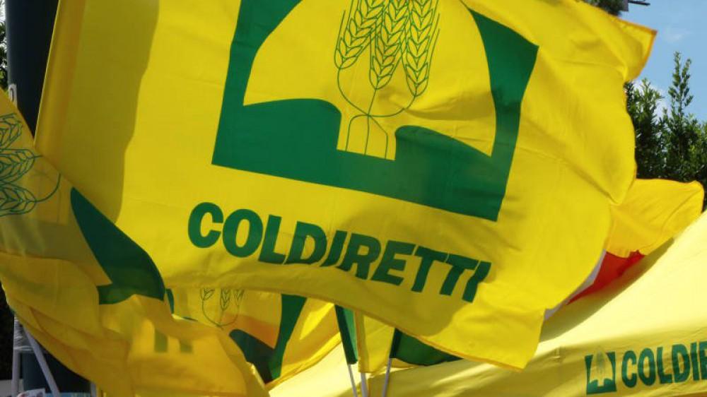 In questo week end 6 italiani su 10 andranno a cena fuori, lo rivela un'indagine di Coldiretti