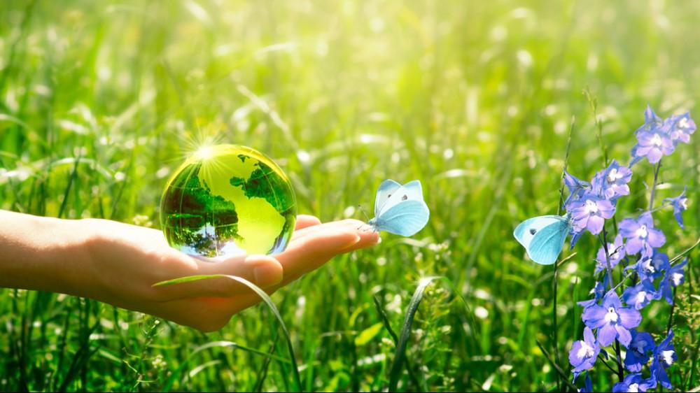 La Giornata Mondiale dell'Ambiente 2021 è dedicata agli ecosistemi. Cruciali per il pianeta e l'uomo