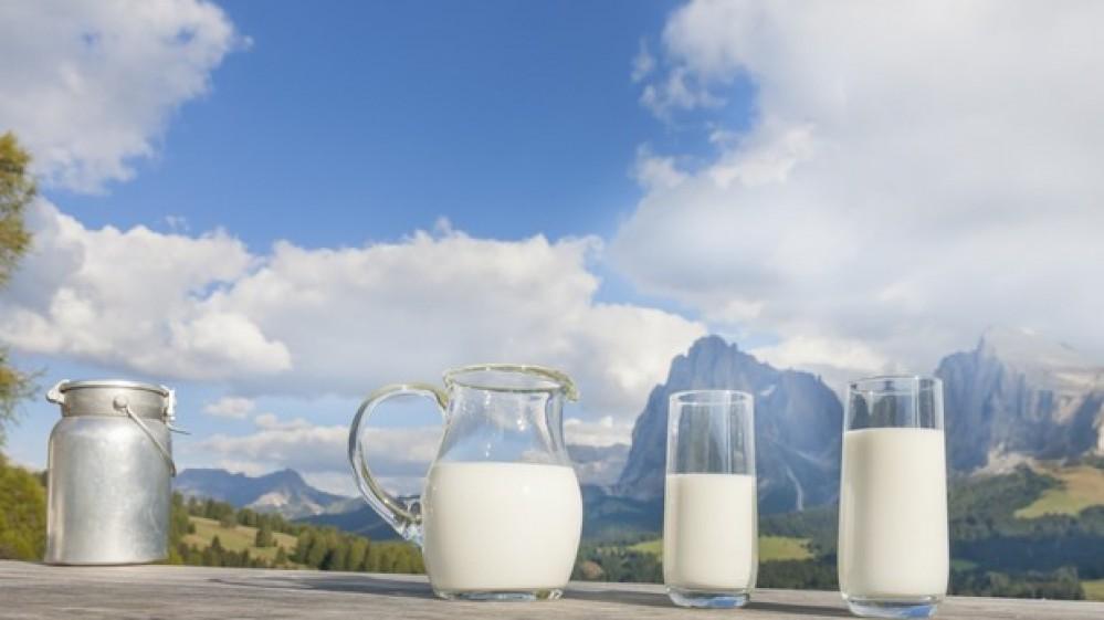 Oggi si celebra la Giornata Mondiale del Latte, alimento evergreen,  gli europei sono al top per i consumi