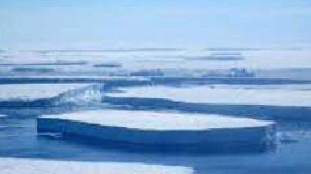 Paura per il futuro dell'Antartide, scatta l'allarme per i ghiacciai  che si stanno sciogliendo