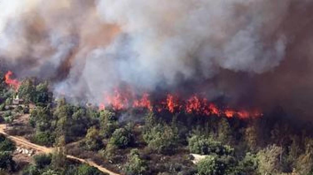 Sardegna, emergenza roghi, centinaia di persone evacuate, 20mila ettari in fumo