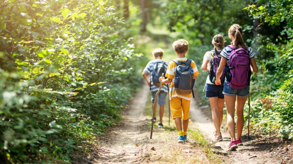 Vacanze alternative, l'estate passata in montagna, tra sport, cucina e aria buona