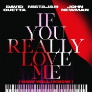David Guetta - If You Really Love Me (How Will I Know)